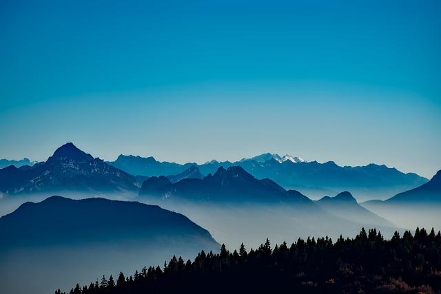 francie hory.jpg
