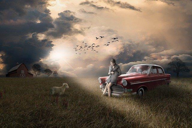 dívka na autě a pes